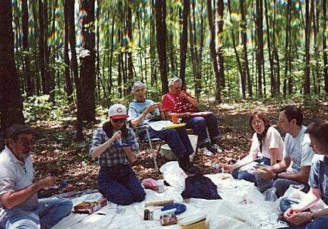 picnic near Daniel Boone National Forest
